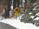 Yosemite_Big_Sur_2014
