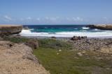 Aruba 2014-492.jpg