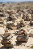 Aruba 2014-520.jpg
