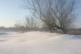 landschap- landscape view