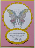 Butterfly card - pastels