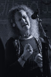 Julie Tippet