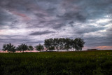 August Nightfall