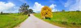 Hay Flat Road