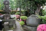 056_Tokyo_Q20C3183.JPG