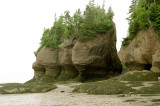 Hopewell Rocks - Rochers Hopewell Bay of Fundy