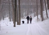 Folks out on the trail on a very windy, snowy day.