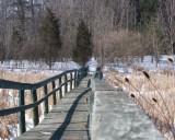 Boardwalk1R.jpg
