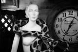 antiques - a detail