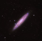 Southern Galaxy The Sculptor NGC253
