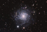 Southern Spiral Galaxy IC5332  crop view