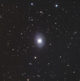 NGC1398  Southern Spiral Galaxy