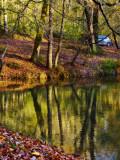 The Fairies' Pond 72