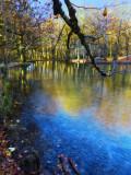 The Fairies' Pond 75