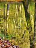 The Fairies' Pond 83