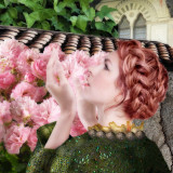 My Sweet Rose...