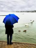 Rain, Rain, go away, come again another day