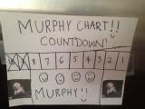 Murphy Chart.jpeg