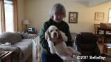 Cooper  170107 002.jpg