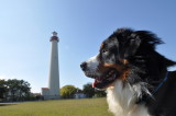Everest at the Cape May Lighthouse