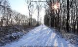 belslijntje_winter_20130116_005.jpg