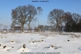 belslijntje_winter_20130116_036.jpg