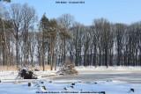 belslijntje_winter_20130116_046.jpg