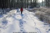 belslijntje_winter_20130116_047.jpg