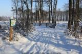 belslijntje_winter_20130116_052.jpg