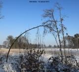 belslijntje_winter_20130116_053.jpg