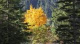 KWT_2013-10-02_119.jpg