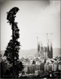 Barcelona_130418_1581.jpg