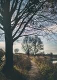 landscape.f_161104_5954.jpg