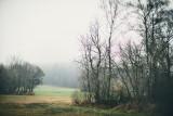 Landschaft.f_161125_6598.jpg