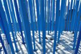 les pailles bleues