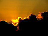 horizon jaune