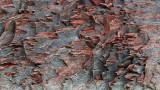 rouge brique