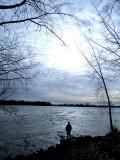 Solitude devant le fleuve
