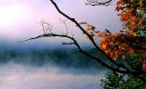 brume matinale à St-Faustin