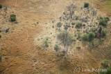 Okavango delta4