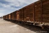Trenes2.jpg