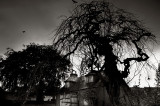 16th October 2013  sad house