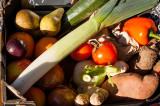 1st March 2014  fruit n veg