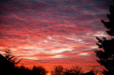 26th March 2014  red sky