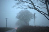 16th December 2015  fog on the road