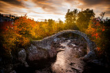 17th October 2016 Carrbridge