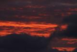 Lauwersmeerluchten