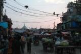2014078512 Monkeys Chandni Chowk Delhi.JPG
