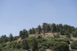 Jordan Ajlun Castle 2013 0922.jpg
