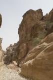 Jordan Petra 2013 2135 Wadi Muthlim.jpg